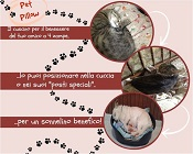 Cuscini di sale per animali - Pet Pillow